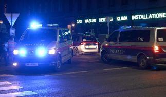 Die Polizei in Wien muss den mysteriösen Fund dreier Frauenleichen aufklären (Symbolbild). (Foto)