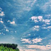 Terra X: Die Macht der Jahreszeiten: Frühling & Sommer bei 3sat (Foto)