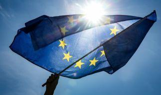 Die Wahl zum Europäischen Parlament, auch Europawahl genannt, fand 2019 vom 23. bis 26. Mai statt. (Foto)