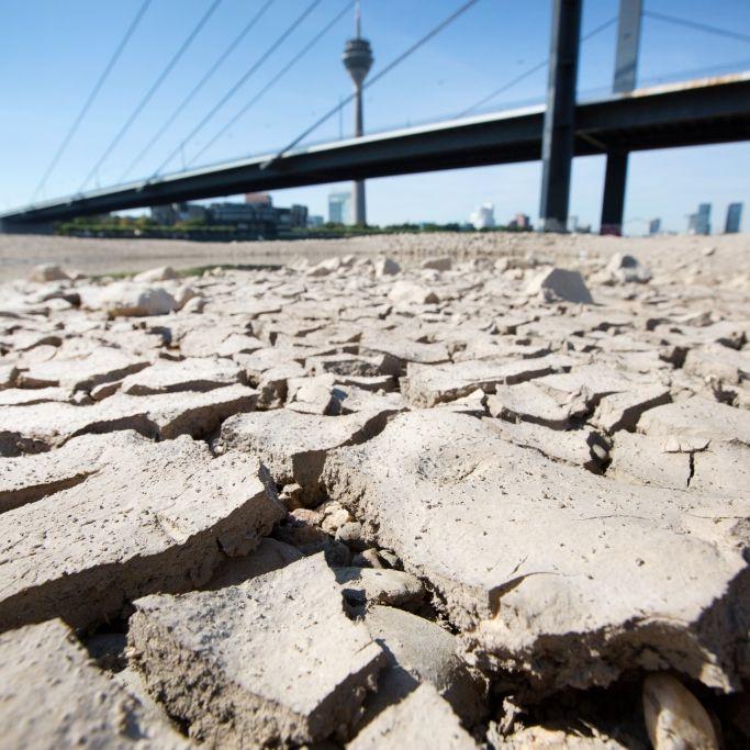 Extrem-Hitze und Unwetter-Chaos! Meteorologen warnen vor Horror-Sommer (Foto)