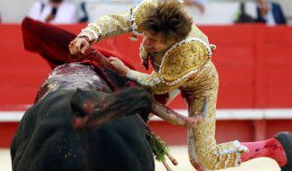 Juan Leal bei einem Stierkampf im Jahre 2014. (Foto)