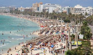 Auf Mallorca kam es zu einem schrecklichen Missbrauch. (Foto)