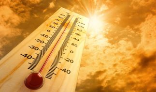 Der Deutsche Wetterdienst hat Hitzewarnungen für einige Regionen Deutschlands herausgegeben. (Foto)