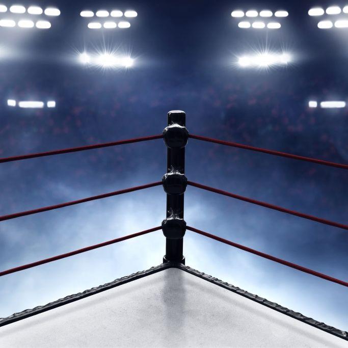 Wiederholung beim WWE Network: The Undertaker bezwingt Bill Goldberg! (Foto)