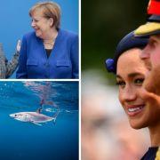 """Herzogin Meghan öffentlich zurechtgewiesen // Hai-Alarm im Mittelmeer // Die """"Selbstzerstörung"""" der CDU (Foto)"""