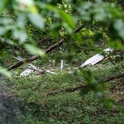 Segelflieger abgestürzt - Pilot (62) tot! Polizei sucht Zeugen (Foto)