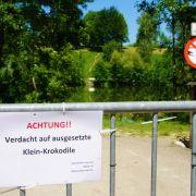 Tummeln sich in diesem See in Kirchheim unter Teck drei Krokodile?