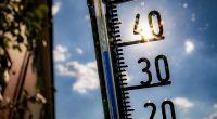 In der letzten Juni-Woche 2019 steht Deutschland ein handfester Hitze-Hammer mit Temperaturen knapp vor der 40-Grad-Celsius-Marke bevor. (Foto)