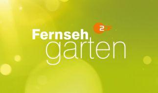 ZDF-Fernsehgarten bei ZDF (Foto)