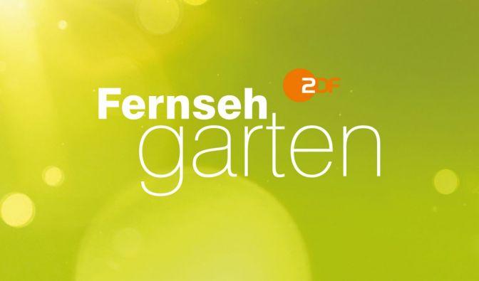 """""""ZDF-Fernsehgarten"""" am 14.7.2019 verpasst?"""