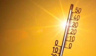 Der Hitze-Sommer 2019 hat Deutschland fest im Griff. (Foto)