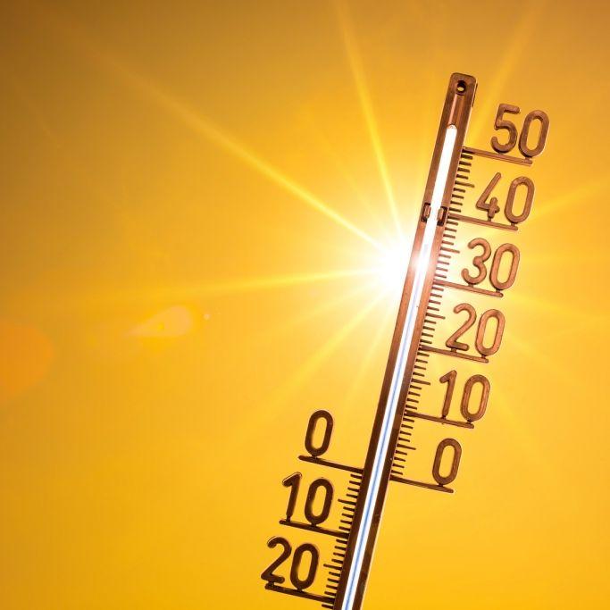 Neuer Hitze-Hammer dank Hoch Ulla! Im Osten bisher am heißesten (Foto)