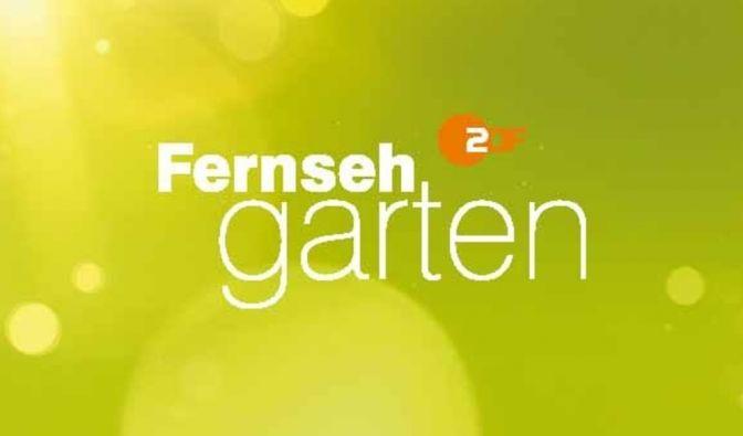 """""""ZDF Fernsehgarten"""" in der Kritik"""