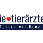 """Wiederholung von """"Zwangspause für ein Kutschpferd"""" online und im TV sehen (Foto)"""