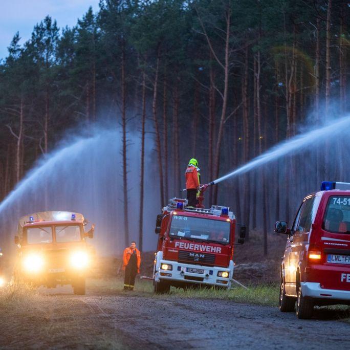 Feuer bei Lübtheen unter Kontrolle - keineoffenen Feuer mehr erkennbar (Foto)