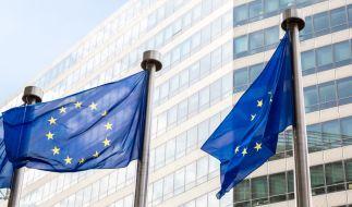 Was verdienen die Abgeordneten des Europaparlaments im Monat? Dieser Frage geht news.de auf den Grund. (Foto)