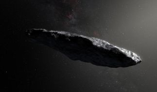 Der Asteroid begeistert die Wissenschaftler seit seiner Entdeckung. (Foto)