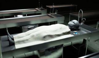 Aufzeichnungen eines ehemaligen CIA-Wissenschaftlers sollen die Echtheit desSantilli-Films von Roswell belegen. (Symbolbild) (Foto)