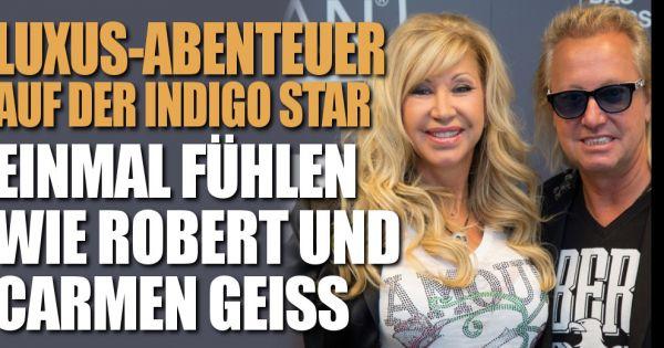 Indigo Star Preis