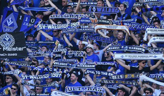 Mannheim vs. Halle im TV verpasst?