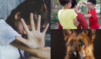 Von Kindesmissbrauch über kaltblütigen Mord bis hin zu Tierquälerei fanden sich etliche erschreckende News in den Nachrichten (Symbolbild). (Foto)