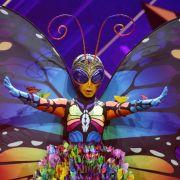 """DAS ist der Preis für die Teilnahme an """"The Masked Singer""""! (Foto)"""