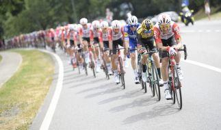 Die Tour de France 2019 ist im vollen Gange. (Foto)