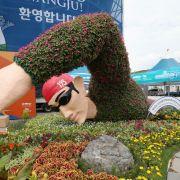 Die Finals der Schwimm-Wettbewerbe in Gwangju live sehen (Foto)