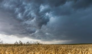 Zum Abschluss der Woche könnte es heute in Deutschland vereinzelt schon wieder Unwetter geben. (Foto)