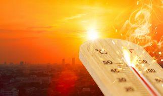 Eine neue Hitzewelle rollt auf Europa zu. (Foto)
