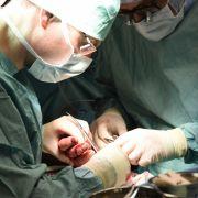 Bakterien zerfressen nach Kratzer von Katze Frauen-Hand (Foto)