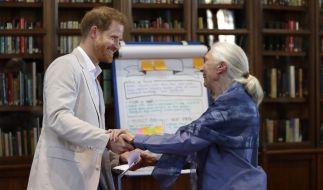 """Dr. Goodall und Prinz Harry auf einer """"Roots and Shoots""""-Veranstaltung. (Foto)"""