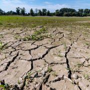 Aber die Hitze hat auch schlimme Folgen für Böden und Gewässer. So führt die Donau beispielsweise Niedrigwasser.