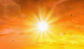 Die Hitze in Europa hat extreme Folgen. (Foto)