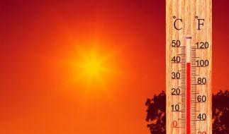 Bleibt es im August so heiß wie im Vormonat? (Foto)