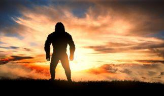 Die Frage nach der Existenz des Bigfoot ist auch weiterhin nicht geklärt. (Foto)
