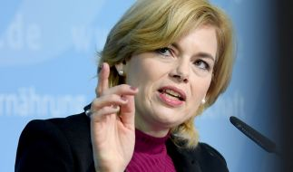 Landwirtschaftsministerin Julia Klöckner will angesichts des Waldsterbens für September einen nationalen Waldgipfel einberufen. (Foto)