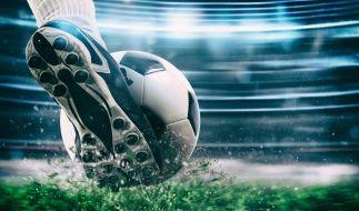 Am 16. August startet die Bundesliga in die neue Saison. (Foto)