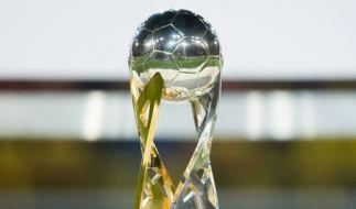 Im Supercup 2019 stehen sich der FC Bayern München und Borussia Dortmund als Meister und Pokalsieger gegenüber. (Foto)
