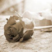 Mysteriöse Todesumstände! TV-Star mit nur 38 Jahren gestorben (Foto)