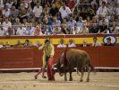 Nach zwei Jahren finden auf Mallorca wieder Stierkämpfe statt. (Foto)