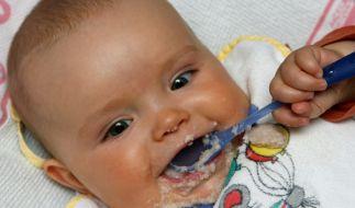 Babybrei im Test (Foto)
