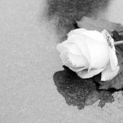 """Traurig! """"Prinz von Bel-Air""""-Schauspieler verliert Kampf gegen den Blutkrebs (Foto)"""