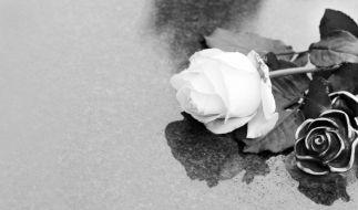 """""""Der Prinz von Bel-Air""""-Schauspieler John Wesley ist mit 72 Jahren gestorben. (Foto)"""