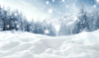 Erwartet uns ein extremer Winter? (Foto)