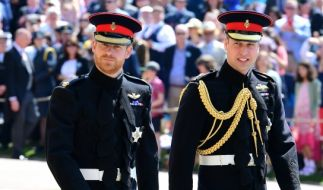 Prinz Harry und Prinz William setzen sich beide für HIV-Erkrankte ein. (Foto)
