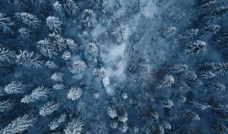 Wie wird das Wetter im bevorstehenden Winter? (Foto)