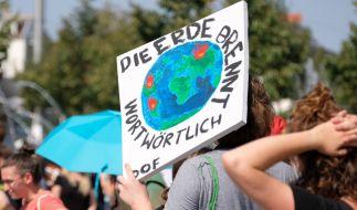 Am 20.09.2019 gehen weltweit Menschen für eine bessere Klimapolitik auf die Straße. (Foto)