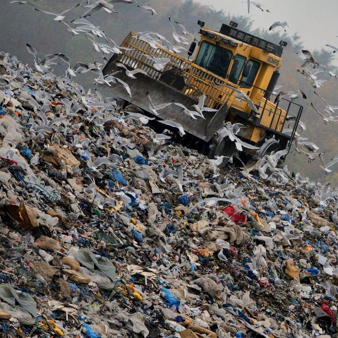 Wehen auf Müllhalde - 12-Jährige bekommt Baby! (Foto)