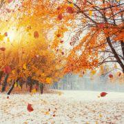 Frost und Schnee kommen! Wintereinbruch lässt Deutschland bibbern (Foto)